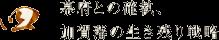 四 幕府との確執、加賀藩の生き残り戦略